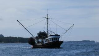 prawn-boat-on-central-coast-natalie-ban